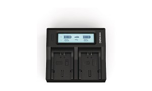 V-LUX1 Panasonic CGA-S006 Dual Battery Charger